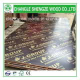Горячее Sale 18mm Printed Logo Film Faced Plywood