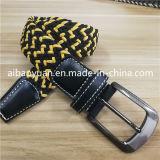 Cinghia elastica lavorata a maglia intrecciata del grano trasversale del Brown