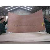 Madeira compensada de madeira do anúncio publicitário da madeira da madeira serrada do folheado de Bb/Bb BB/CC 2-25mm Okoume