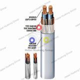 La UL Enumeró 2/0 Cable de la Entrada de Servicio del Aislante de Xhhw Xhhw-2 XLPE