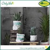 Плантатор ткани Onlylife BSCI Eco-Friendly многоразовый