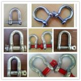 Us Drop Forged Chain Shackle