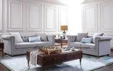 Salle de séjour classique neuve de modèle de meubles plus vendus