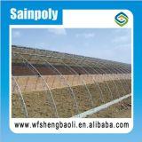 سعر جيّدة دفيئة شمسيّة يستعمل لأنّ زراعة