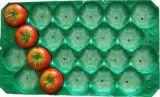 Certificado FDA lleno transparente Blister bandejas de embalaje de plástico PP para frutas y hortalizas
