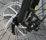 Bici elettrica della montagna di sport della bici 26 di Crusie '' con la gomma con il METÀ DI motore storto