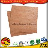 Face de Bintangor/traseiro com madeira compensada da boa qualidade