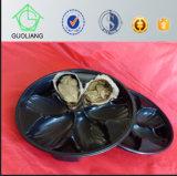 Tellersegment des freies Beispielnahrungsmittelgrad-pp. für Auster