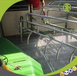 돼지 장비 돼지 농장 디자인 새끼를 낳는 크레이트 농기구