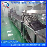 음식 기계장치, 과일 야채 씻기 및 표백 기계