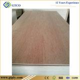 Álamo/Okoume/Bintangor/pino/tarjeta comercial de los muebles de la madera contrachapada de la cara y de la parte posterior del abedul