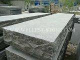 Pietra facente un passo di pavimentazione esterna della scala del giardino/patio dei mattoni del calcare naturale di Wellest L828