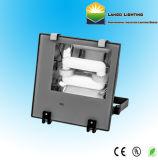 Projecteur d'induction avec garantie de 5 ans (LG0553-1A)