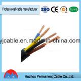 Câble électrique isolé PVC dans deux ou trois -Type de noyau (RVV)