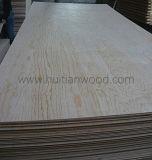 Madera contrachapada mongol de la suposición del pino escocés del alto grado para los muebles/la decoración