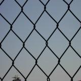 チェーン・リンクFence/PVCの上塗を施してある網