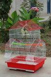 Birdcage della gabbia dell'animale domestico di prezzi competitivi e di alta qualità