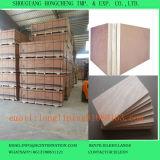El contrachapado/comercial en el contrachapado de abedul//Okoume de contrachapado de madera contrachapada