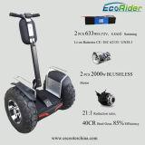 Elektrisches Roller-neue Produkte Ecorider Lithium-Batterie schwanzloses Rad-mini elektrischer Roller 2016 des Gleichstrom-Motor2 4000W