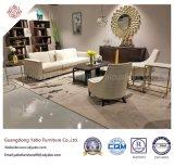 Muebles abundantes del hotel para la sala de estar con el sofá fijado (YB-B-16)