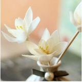 Elegante alrededor de de cerámica con la flor de Sola del petróleo esencial para los conjuntos de lámina del regalo del difusor