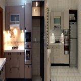 Gabinete de cozinha Home moderno da decoração