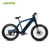 Cool Man style montagne Vélo électrique pour la vente Ebike