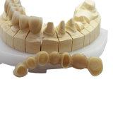 Обедненной смеси Porclain зубов в стоматологической лаборатории
