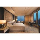 Роскошный новейших конструкций для отеля обставлены мебелью с одной спальней