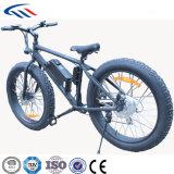 36Vリチウム電池350Wモーター脂肪質のマウンテンバイク