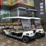 Сертифицирована ISO 11 полей для гольфа сиденья тележки (Lt-A4+2)