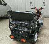 Китай электрический 3 Колеса мотоцикла, мобильности инвалидов инвалидных колясках