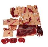 X-Yジョンの高いシミュレーションの外傷の人体摸型