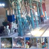 Le gruau de maïs du rouleau de broyage de marteau la farine de maïs broyage Mill Making Machine