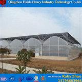 Hydroponic 시스템을%s 가진 중국 공장 가격 플레스틱 필름 온실