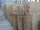 別荘の壁のタイルのための中国白のTravertineの平板