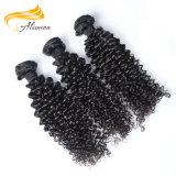 Cheveux humains réels aucuns paquets brésiliens de cheveu bouclé de Vierge mélangée