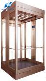 شامل رؤية مصعد مرآة [ستس] سيدة آلة مسافر مصعد