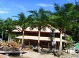 Utilisation extérieure ou d'intérieur Gu-SL2091120 de palmier artificiel de cocos