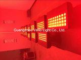 Vello de pared LED impermeable RGBW lavar la etapa de la luz (LED color H4).