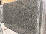 星の花こう岩のSlabs&Tilesの灰色の花こう岩Flooring&Walling