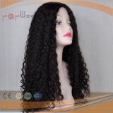 Curly Long Human Virgin Hair Full Laces Wig (PPG-l-0253)