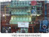 Co. van de Dieselmotor van Yichang Marien, Ltd