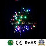 LEIDEN van Kerstmis van het koord Lichte Licht