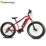 都市Ebike 48V 14.5ah 1000Wの電気自転車