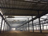 Almacén del taller de la estructura de acero