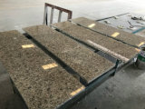 De lichte Comités van de Honingraat van het Graniet voor de BuitenBekleding van de Muur