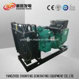 570kw Cummins elektrischer Strom-Dieselgenerator Soem-Fabrik mit Iws