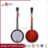 Flamed Maple compensado de madeira Banjo obrigatório (ABO245HH-1)