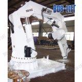 10m/3t de brazo articulado para la venta de grúas de cubierta